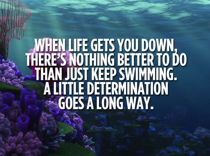 """A Life Lesson From """"Finding Dory"""" The Movie?"""